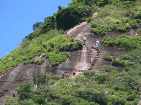 escadaria-final-da-trilha-do-pico-da-tijuca-caminhadas-ecologicas-rj