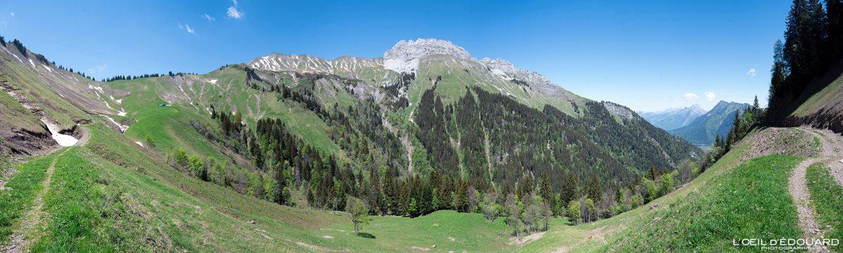 Vallon Les Drisons: Pointe de Chaurionde e Pointe de la Sambuy - Maciço des Bauges Savoie Alpes França Paisagem montanhosa - Paisagem montanhosa Alpes franceses ao ar livre