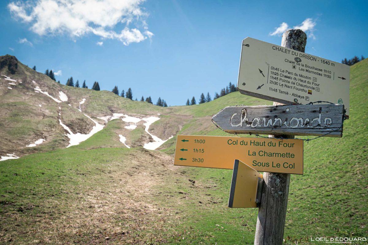 Col du Drison - Trilha para caminhada no Maciço des Bauges Alpes Savoy França Paisagem montanhosa - Alpes franceses Paisagem montanhosa Trilha para caminhada ao ar livre