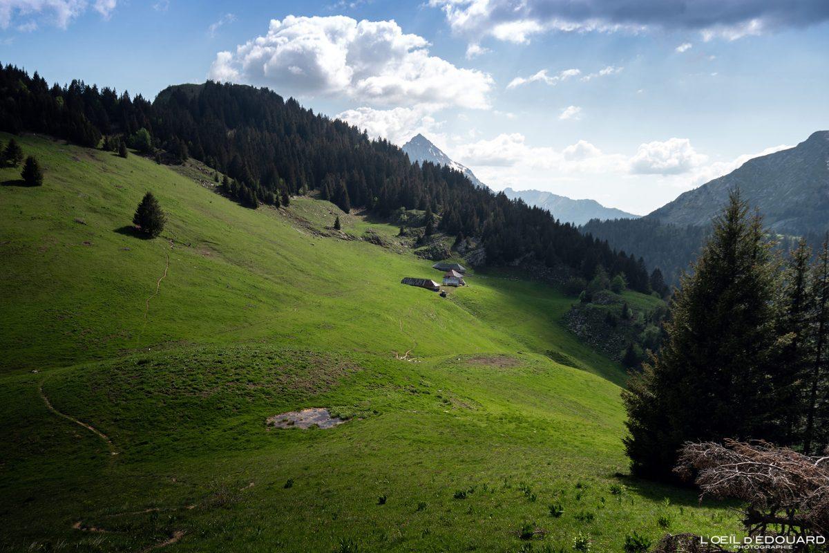 Chalets du Col du Haut du Four - Bauges caminhadas maciço Savoie Alps França Paisagem Montanha - montanha paisagem Alpes franceses Trilha de caminhada ao ar livre
