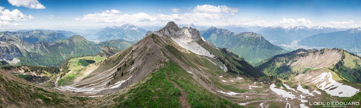 Vista panorâmica no topo da Pointe de Chaurionde: La Pointe de la Sambuy - maciço de caminhada dos Alpes Savoy de Bauges França Paisagem montanhosa - paisagem montanhosa Caminhada alpina ao ar livre