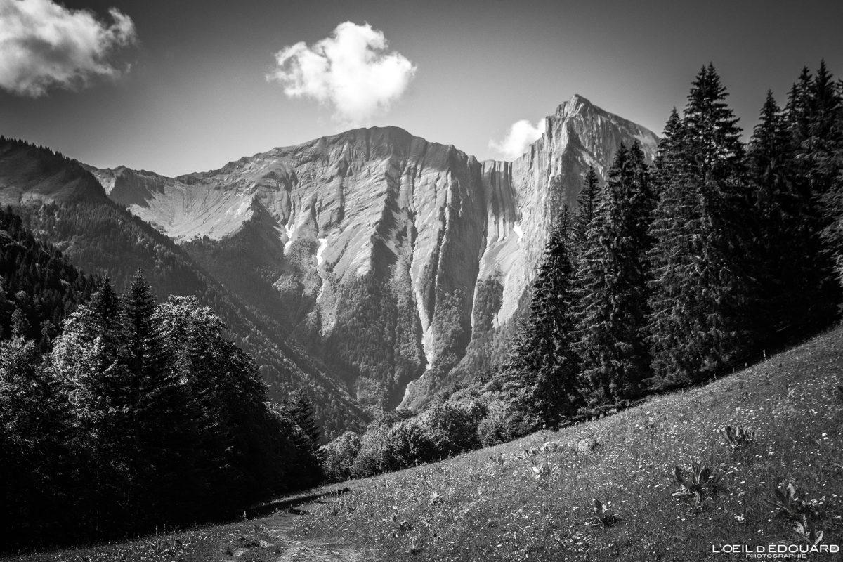 Face norte do Monte Pécloz Maciço des Bauges Alpes Savoie Paisagem montanhosa francesa - Alpes franceses Paisagem montanhosa ao ar livre