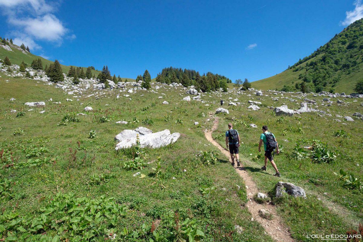 Caminhada Maciço Col d'Orgeval des Bauges Alpes Savoie França Paisagem Montanha - Casa Paisagem de montanha Alpes franceses Trilha de caminhada ao ar livre