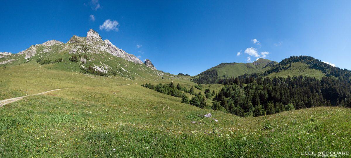 Alpage Col d'Orgeval Maciço des Bauges Savoie Alpes França Paisagem Montanha Arcalod Chaurionde - Paisagem montanhosa Alpes franceses Caminhadas ao ar livre Caminhadas