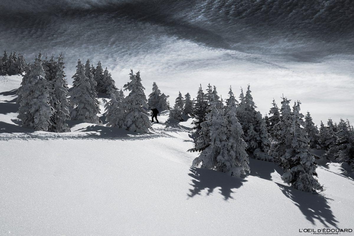 Ski Touring Le Quermoz from the Grand Naves Beaufortain maciço Alpes Savoie Paisagem Floresta Montanha Neve Inverno França Alpes franceses Paisagem montanhosa Floresta de inverno Neve Ski touring