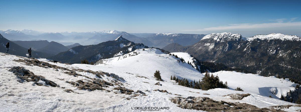 Esqui de esqui Sommet du Charmant Som no inverno Chartreuse Maciço Isère Alpes Montanha Neve França Alpes franceses Paisagem montanhosa Esqui de inverno Neve