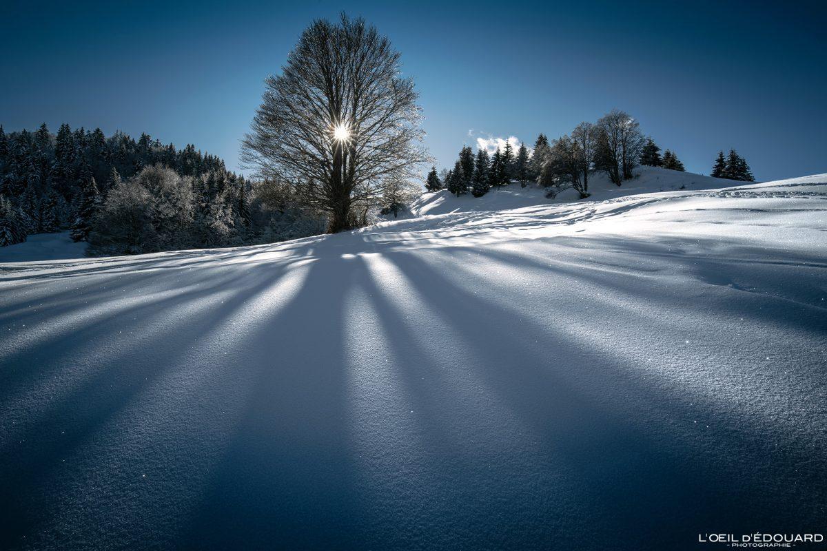 Ao Ar Livre Ãrvore Sapatos de neve Le Revard Massif des Bauges Savoie Alps Inverno Montanha Neve França Paisagem montanhosa Guarda-sol França