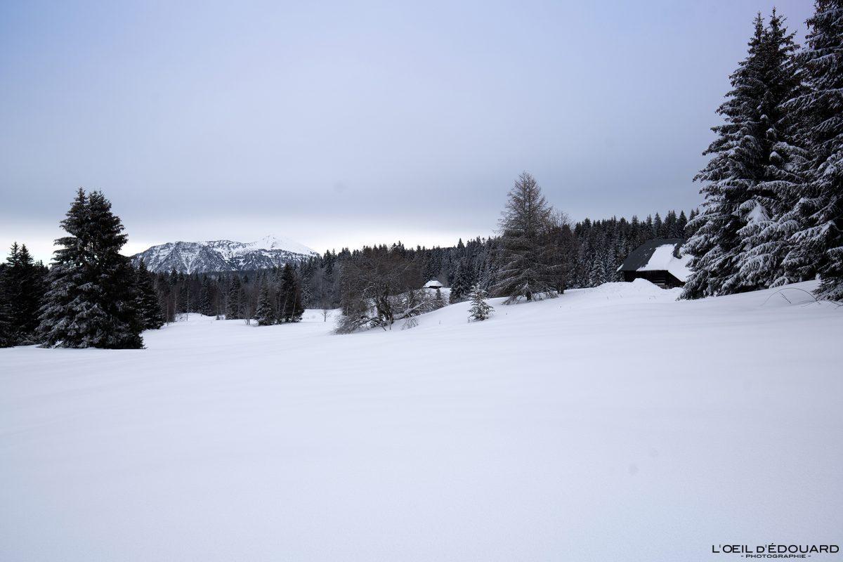 Pântano de Creusâtes Caminhada Sapatos de neve Le Revard Massif des Bauges Alpes Savoie Paisagem Montanha Neve Inverno França Neve Exterior Inverno Alpes franceses Paisagem montanhosa