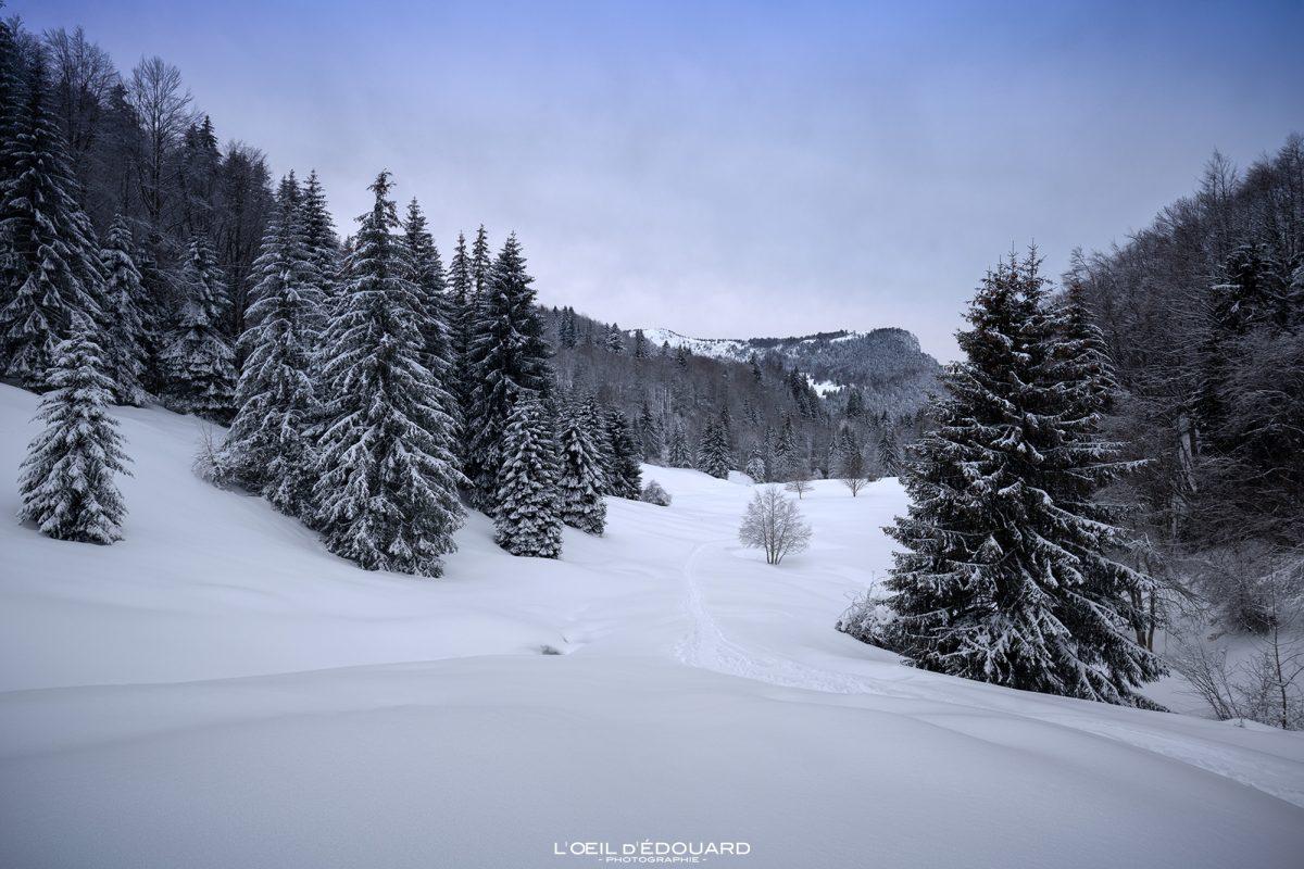 Alpes Franceses Ao Ar Livre Sapatos de neve Le Revard Massif des Bauges Savoie Alpes Neve Montanha Neve Paisagem Inverno Montanha França