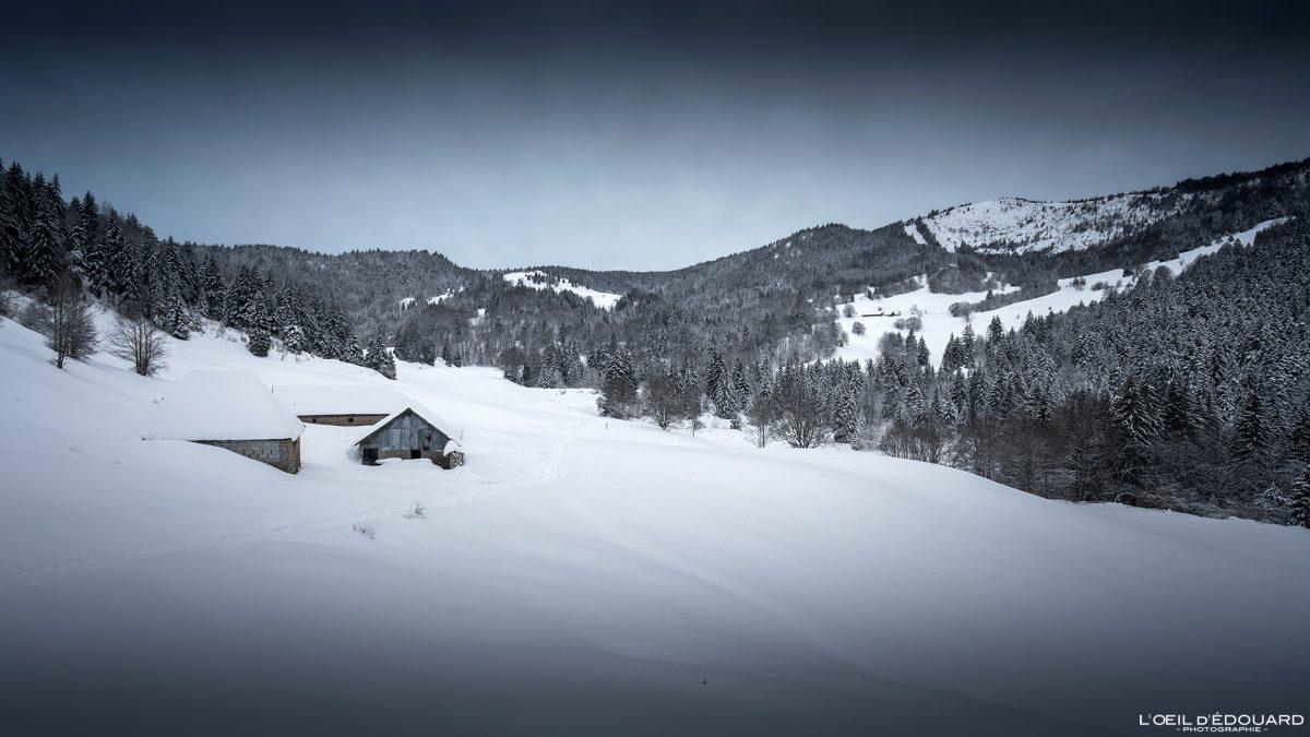 Alpes Franceses Caminhada Chalets Sapatos de neve Le Revard Massif des Bauges Montanha Neve Paisagem Montanha França Alpes franceses Neve de inverno