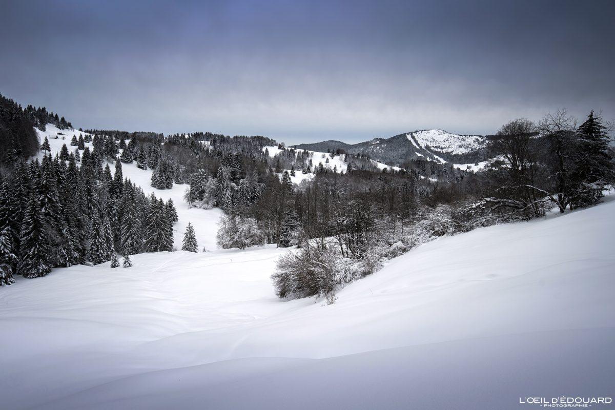 Alpes franceses Caminhada Les Otalets Sapatos de neve Le Revard Massif des Bauges Montanha Neve Paisagem montanhosa Inverno Neve França