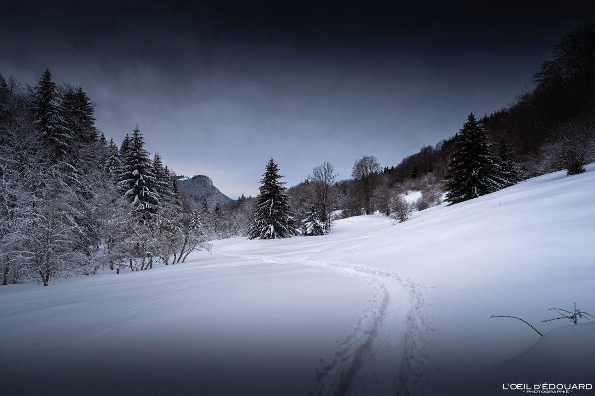 Alpes franceses Caminhada Les Otalets Sapatos de neve Le Revard Massif des Bauges Montanha Neve Paisagem Montanha Neve de inverno França