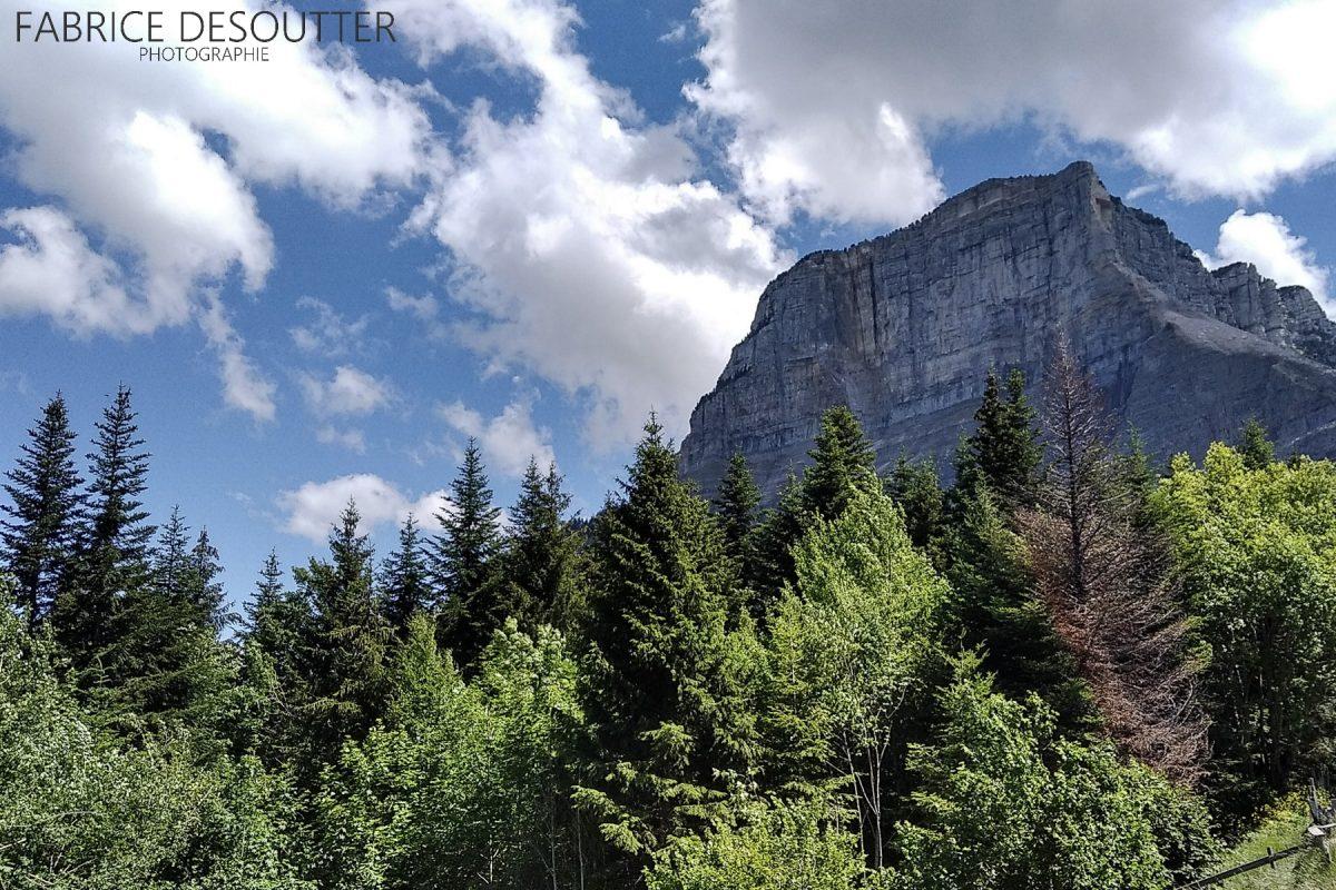 Face norte do maciço do Mont Granier de la Chartreuse Alpes Savoy França - paisagem montanhosa Alpes franceses