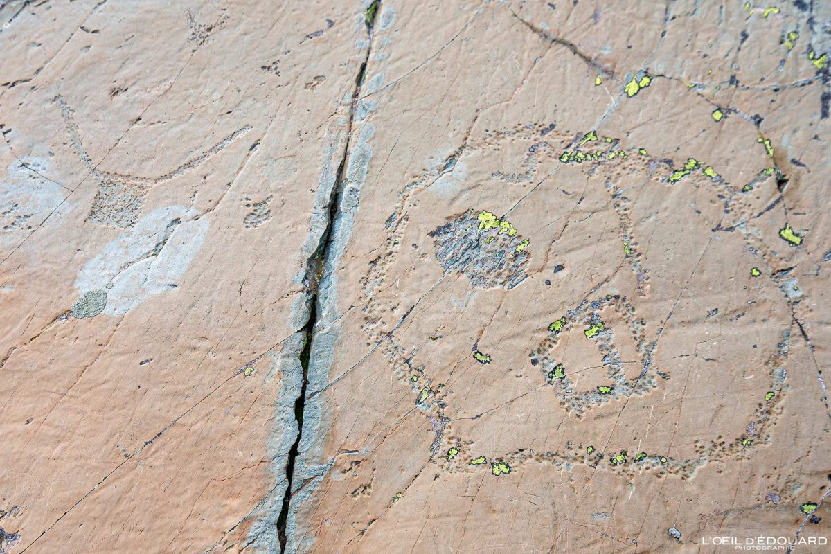 Gravura rupestre Rocha vandalizada Vallée des Merveilles - Maciço du Mercantour Alpes-Maritimes Provença-Alpes-Côte d'Azur / Arqueologia Pré-história Arte pré-histórica Montanha Rocha de montanha ao ar livre