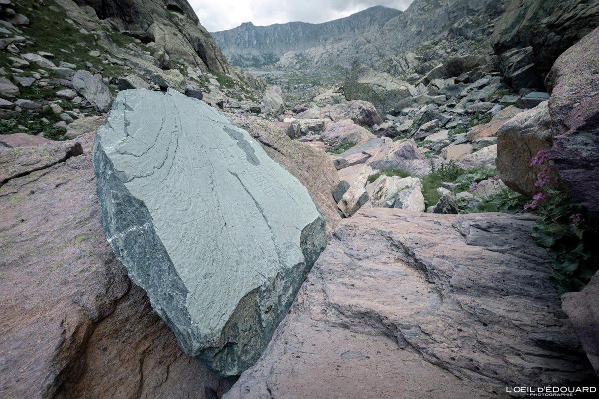 Esculturas rupestres Estela do chefe tribal Vallée des Merveilles - Alpes do Maciço do Mercantour Maritime Provence-Alpes-Côte d'Azur / Arqueologia Pré-história Arte pré-histórica Rochas de montanha nas montanhas ao ar livre