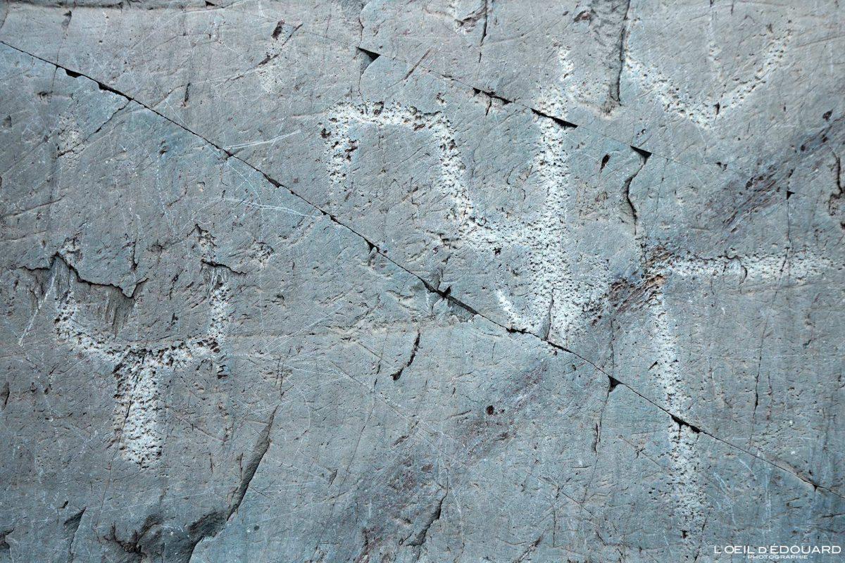 Gravações rupestres Altar rocks Vallée des Merveilles - Maciço Mercantour Alpes-Maritimes Provença-Alpes-Côte d'Azur / Arqueologia Pré-histórico Arte pré-histórica Montanha Ao ar livre Montanha Rocha