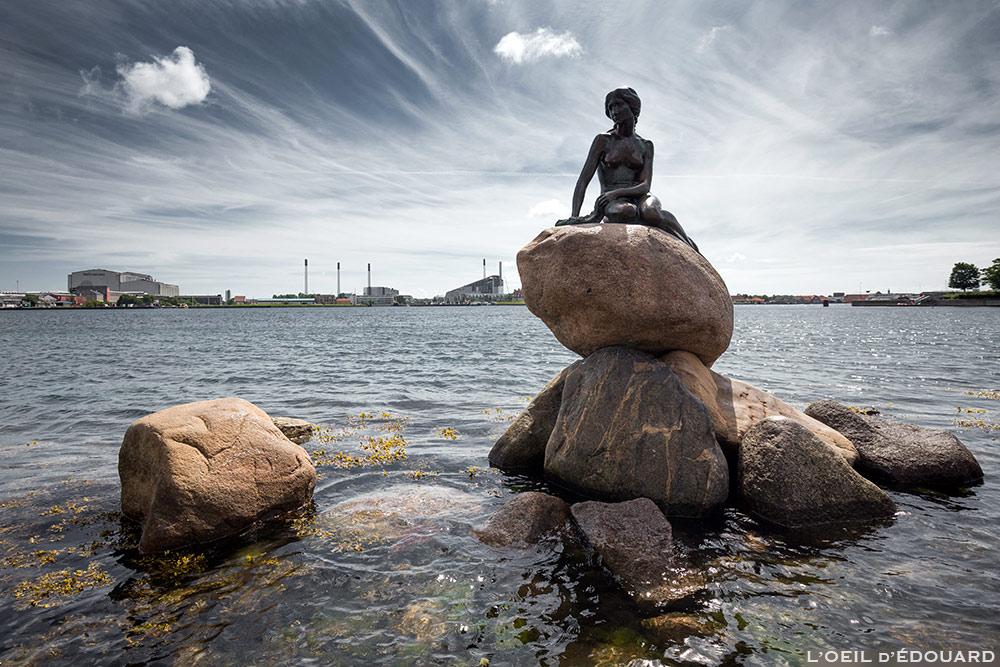 Estátua da Pequena Sereia em Copenhague, Dinamarca © L'Oeil d'Édouard