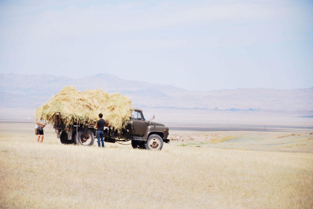 Paisagem Cazaquistão Ãsia Ãsia Viagem por estrada Paisagem