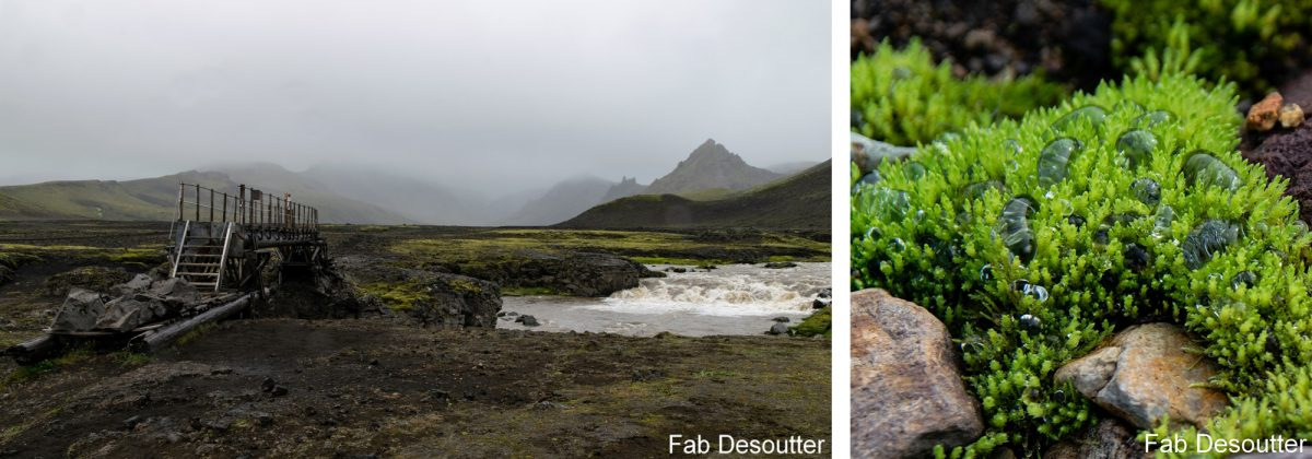 Paisagem Trek Laugavegur Landmannalaugar Ilha Mountain Trekking Ilha Paisagem Islensk Outdoor Wild