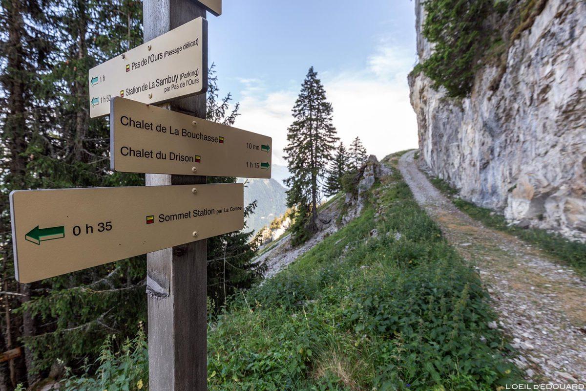 Percurso de caminhada Chalet de la Bouchasse, La Sambuy, Haute-Savoie-Alpen - Paisagem de montanha Alpes Caminhada de paisagem de montanha ao ar livre