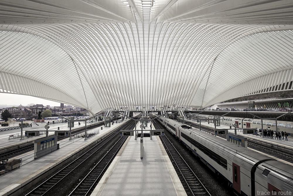Arquitetura Estação Guillemins Liège - Santiago Calatrava - Plataformas Trens ferroviários Telhado de vidro abobadado