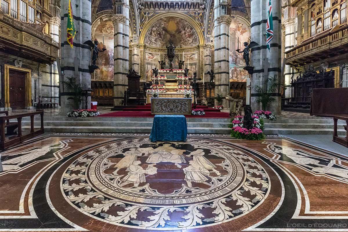 Coro da Catedral de Siena - pavimento com piso de mármore pavimentado Dom de Siena (Santa Maria Assunta): História de David, Domenico di Niccolò dei cori