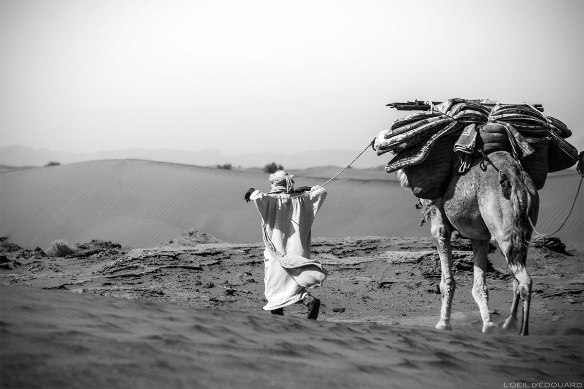 Nômade saharaui caminhando em um camelo no deserto marroquino © L'Oeil d'Édouard