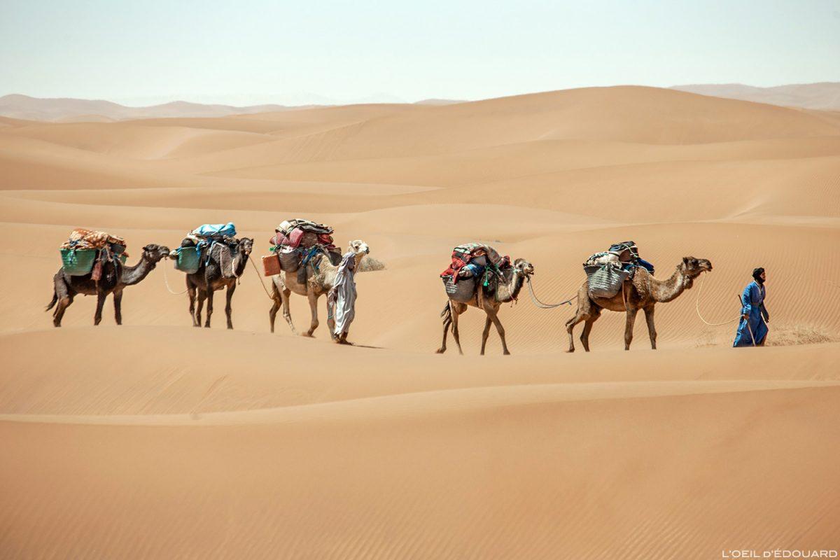 Excursões no deserto marroquino: caravana nómada saharaui com camelos - excursão melódica no deserto © L'Oeil d'Édouard