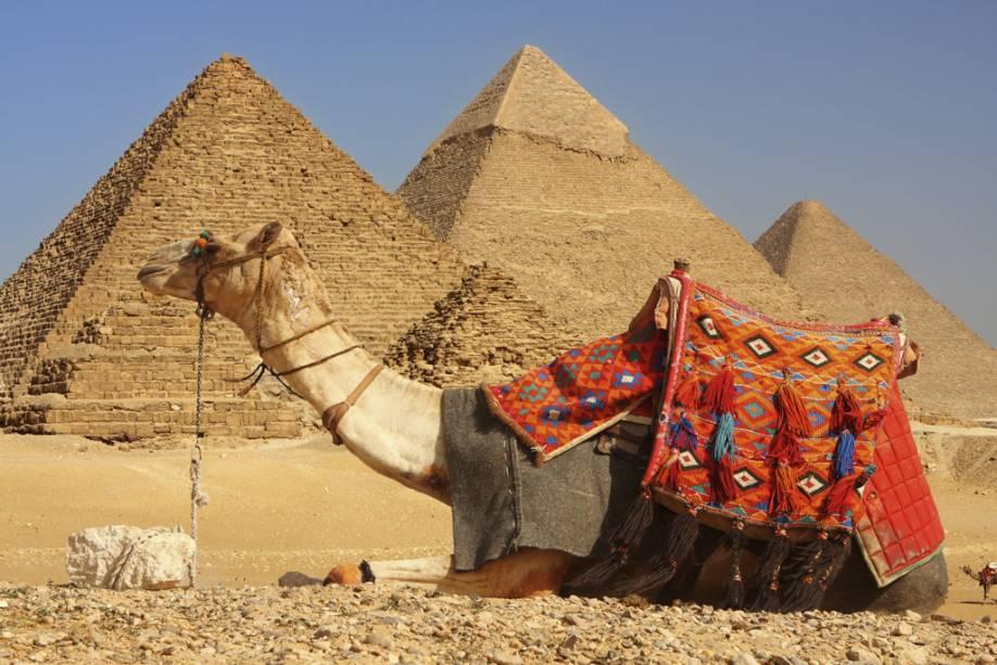 Passeios de dromedário nas pirâmides de Gizé encantam muitos turistas