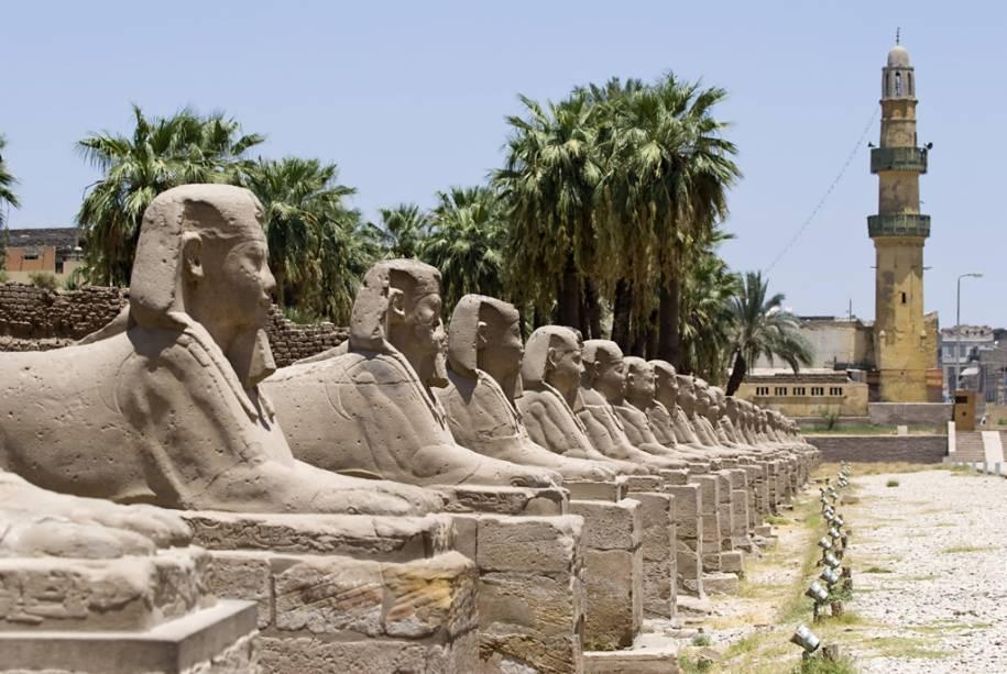 Linha de esfinges no templo de Luxor, Egito