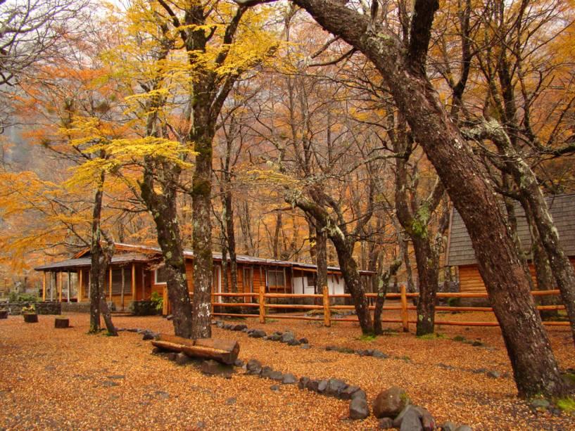 Cobrindo uma área de 710.000 hectares, o Parque Nahuel Huapi possui lagos, rios e montanhas.  O local oferece esqui, pesca de trutas nos lagos, caminhadas e escaladas.