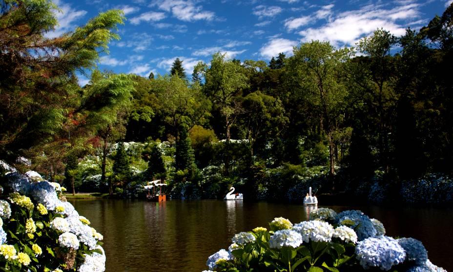 LAGO SCHWARZER - Com as árvores da vasta Floresta Negra na Alemanha, este belo lago é um lindo passeio para caminhar de mãos dadas a bordo de um dos muitos pedalinhos que circulam por lá.