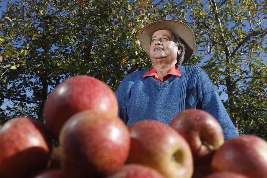 Os licores, geléias e chás de ervas são feitos com as frutas mais produzidas da região.