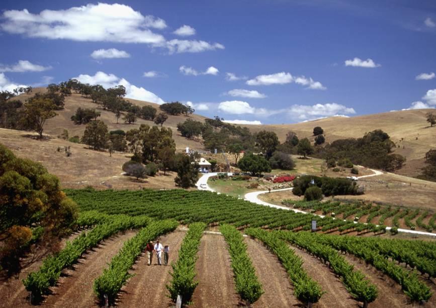 O Vale Barossa, a 86 quilômetros de Adelaide, é a região vinícola mais famosa do estado da Austrália do Sul, com mais de 50 vinícolas e vinhedos