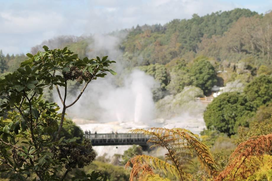 Parque Te Puia