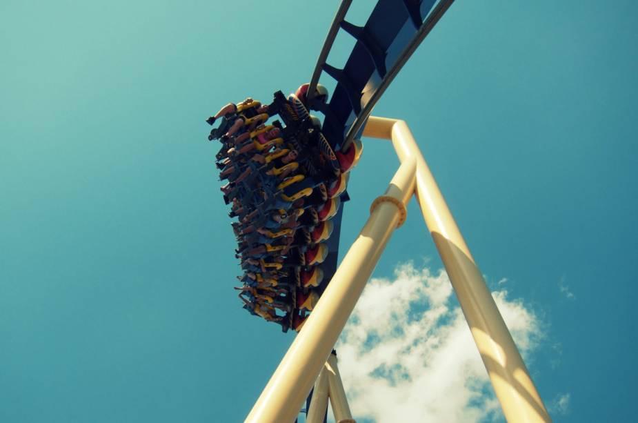 Montu é uma das adrenalina do Busch Gardens