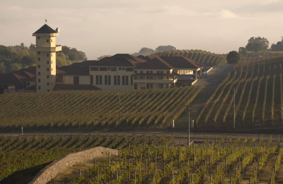 Turistas em visita à vinícola Casa Miolo, no Vale dos Vinhedos em Bento Gonçalves