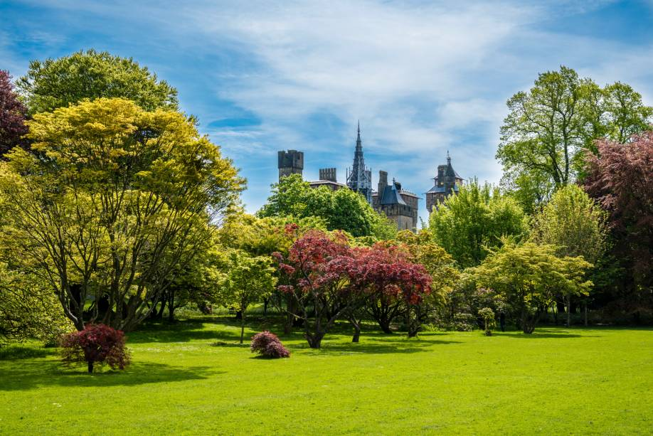 Com seus belos parques e jardins, Cardiff é considerada uma das cidades mais verdes da Grã-Bretanha.  Essa fama fica ainda mais evidente no Bute Park: uma área de 56 hectares possui diferentes tipos de árvores, plantas e flores.