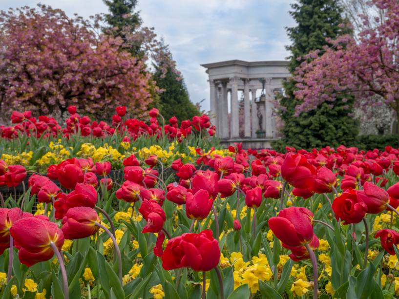 Cardiff é considerada uma das cidades mais verdes da Grã-Bretanha.  São mais de 300 parques e jardins bonitos e bem cuidados que atraem o visitante