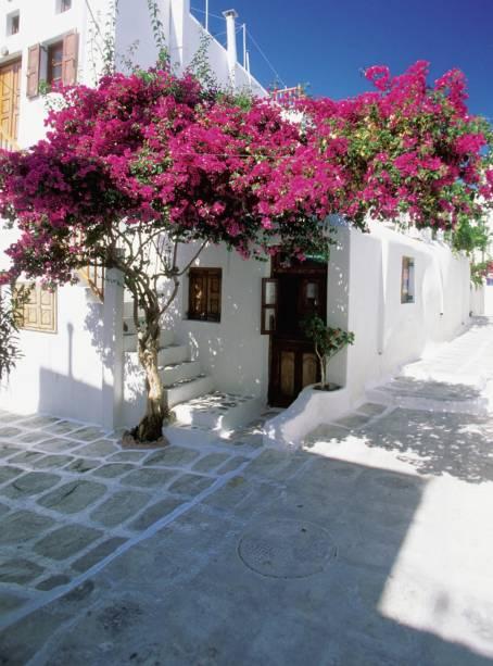 As famosas casas caiadas de branco praticamente no mar e alinhadas em ruas estreitas compõem a bela paisagem de Santorini