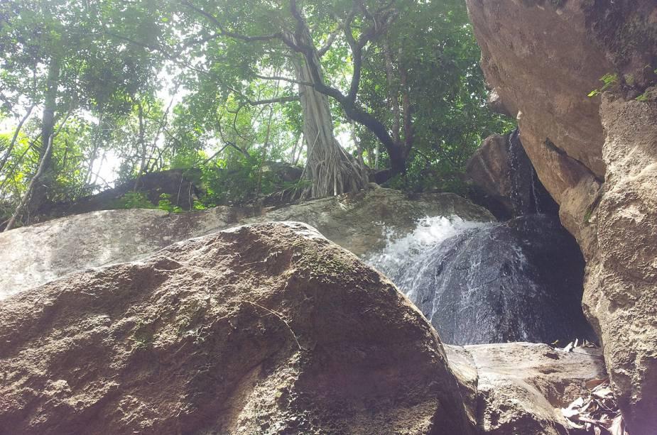 Cachoeira das Andorinhas em Goiás (GO)