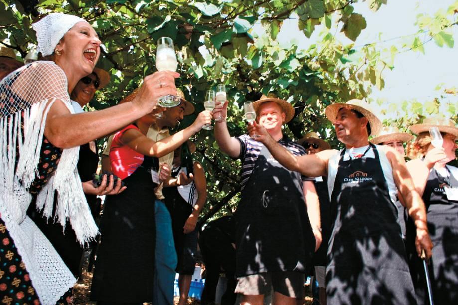 Turistas brindando com espumante na Vintage Party, atração da vinícola Casa Valduga, no Vale dos Vinhedos, em Bento Gonçalves