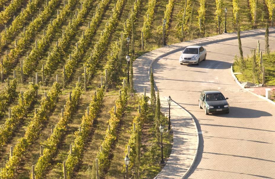 Vinha na zona onde está localizado o Villa Europa Hotel & Spa do Vinho Caudalie Vinothérapie, no Vale dos Vinhedos, em Bento Gonçalves
