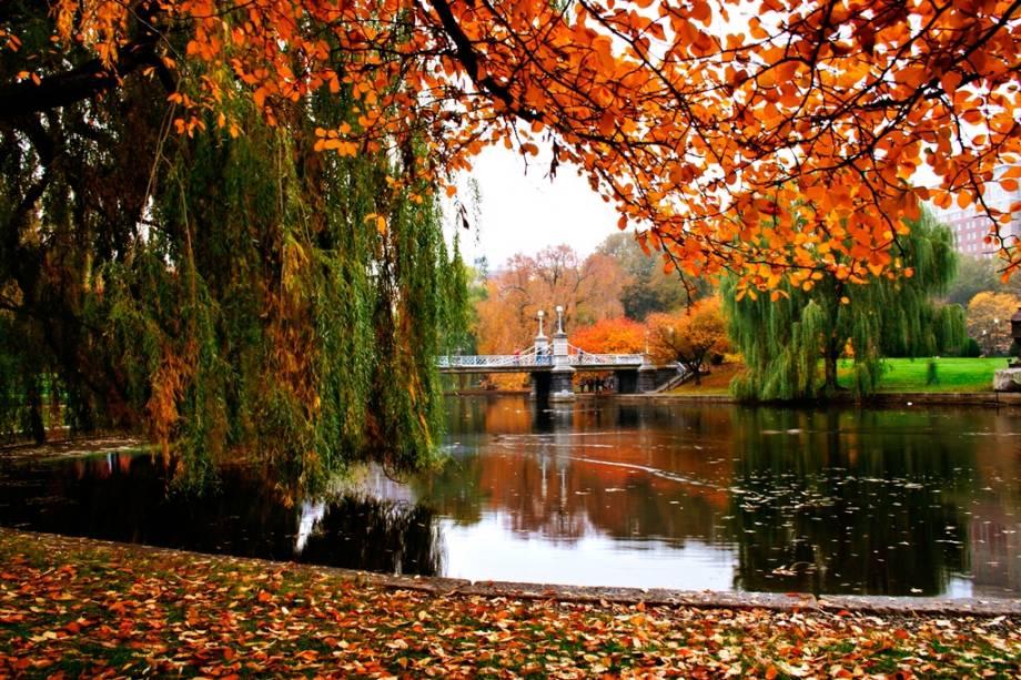 Paisagem de outono do jardim público de Boston.  Com um desenho que remonta a 1837, está localizado no coração da cidade, e com seu clima ventoso e diferentes tipos de árvores, flores e plantas, é um passeio preferido dos citadinos.