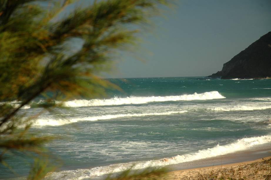 Na praia da Silveira não há bares ou restaurantes, ela é cercada por morros e muitas florestas virgens.