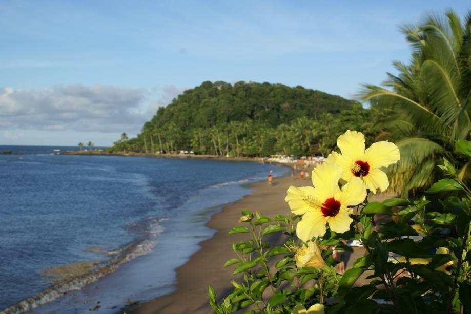Flores na Praia São José, cujo acesso é fechado por um conjunto residencial e dois conjuntos.