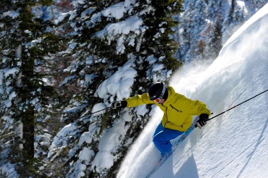 Neve em pó em Vail, Colorado