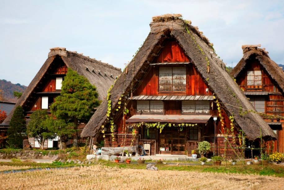 Você pode visitar os vilarejos de Shirakawago e Gokayama de ônibus saindo de Takayama