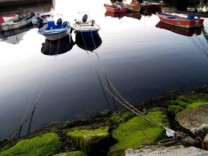 O porto galego de Vigo é o mais movimentado de Espanha em termos de produção de pescado.  Além de fonte de subsistência, o mar deixou a cidade com um forte patrimônio gastronômico, além de polvo e sardinha grelhados incomparáveis.