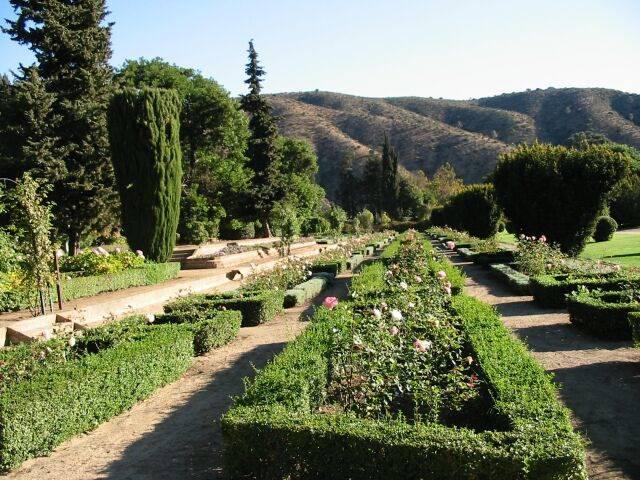 Com mais de 3.000 plantas nativas e exóticas, o Jardín Botánico Nacional é um oásis em meio à agitação de Viña